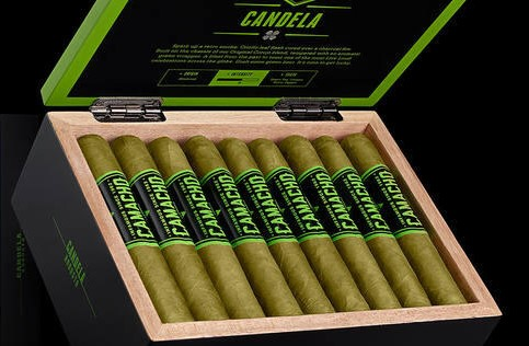 A box of Candela green leaf cigars